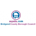 Bridgend Regulated LLC1 and Con29 Search